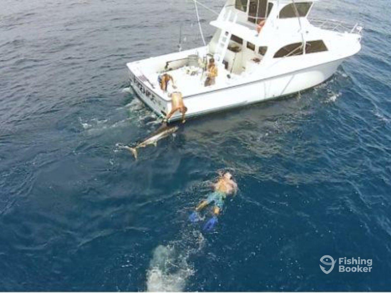 Vengeance charters destin fl fishingbooker for Destin florida fishing trips