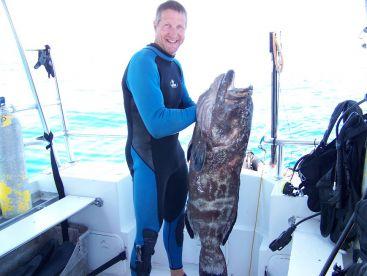 Key Largo grouper