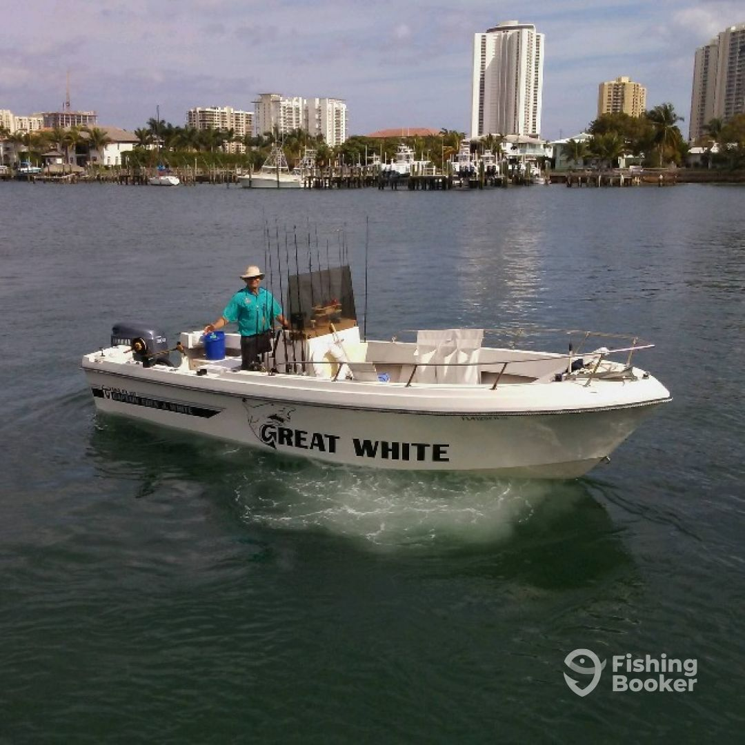 West Palm Beach In 2019: Great White (West Palm Beach)