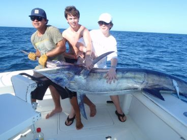Big blue marlin are here!!