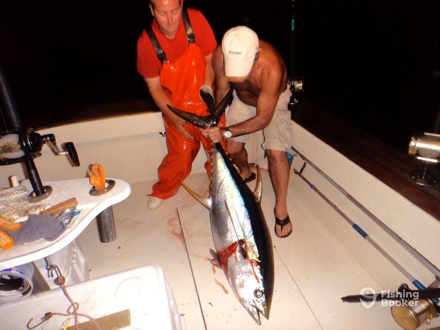 yellowfin tuna 80 lb class