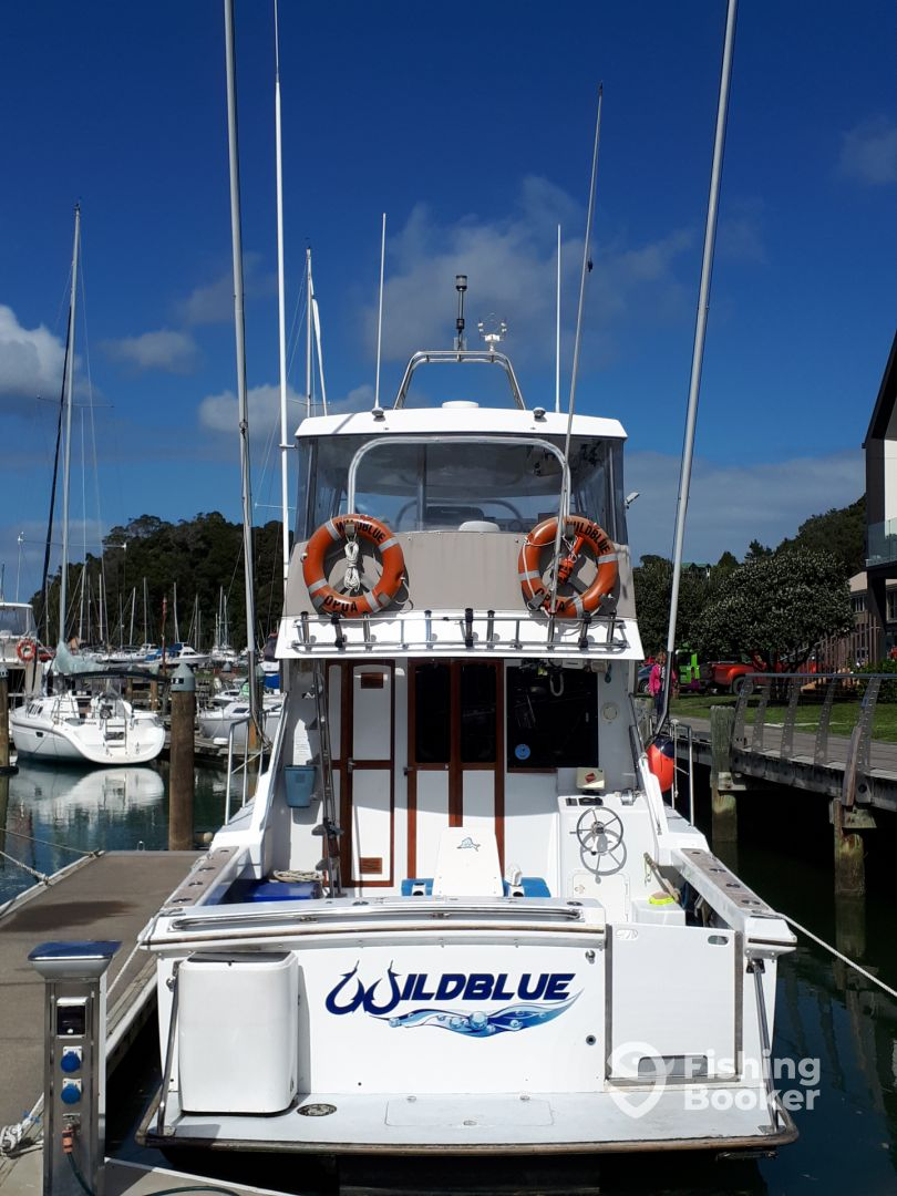 Wildblue Charters