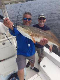 Big healthy Redfish