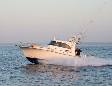Blue Captures Fishing Charters