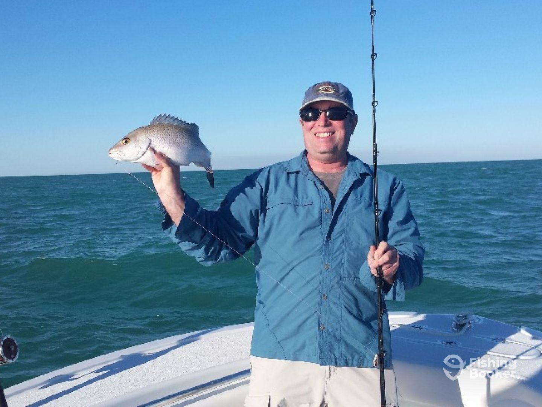 Niche fishing charters cortez fl fishingbooker for Florida fishing trips