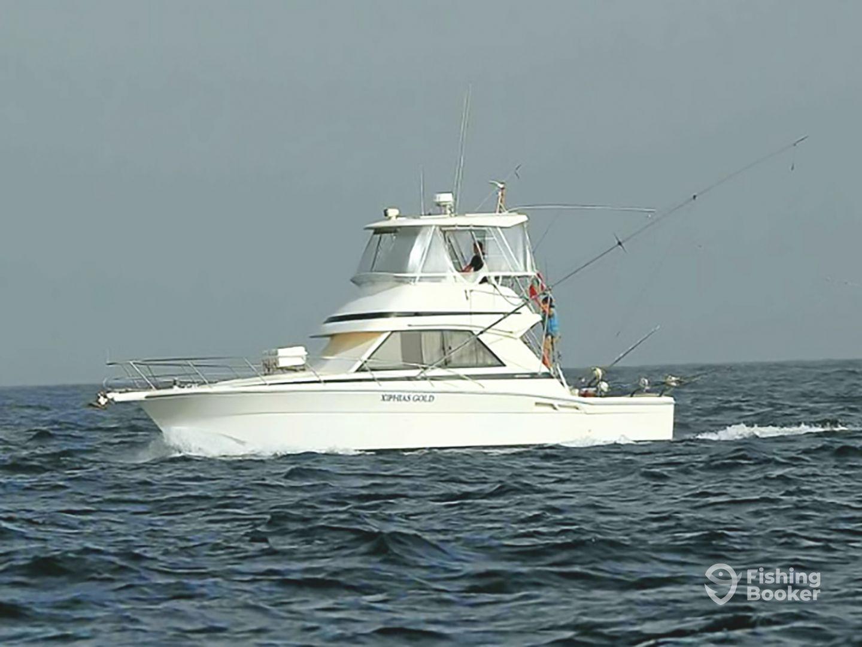 AQUASARES Fishing Charters