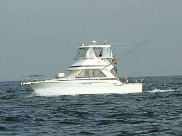 AQUASARES Fishing Charters