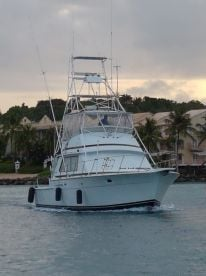 Reel Crazy Fishing Charters - 42 ft