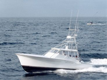 Spring Mix II Sport Fishing Charter