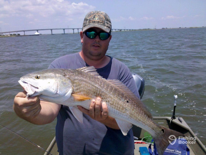Capt jb s charters sundance apalachicola fl for Apalachicola fishing charters