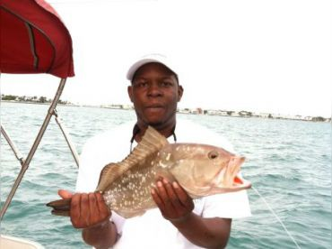 Easy fishing on the Starstream