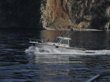 Galex Fish, Budva