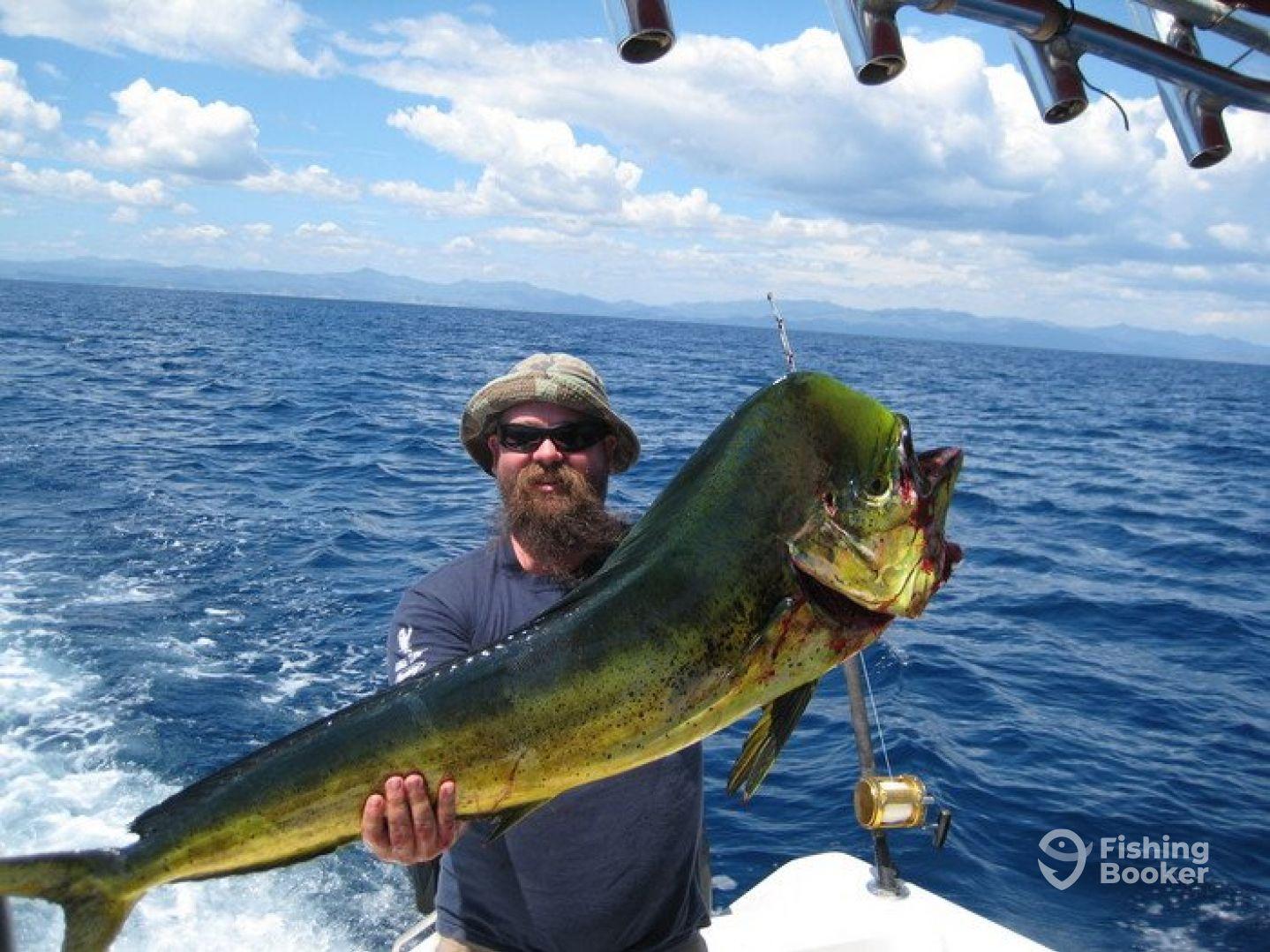 Fishing punta cana los vinchi ii b varo dominican for Dominican republic fishing