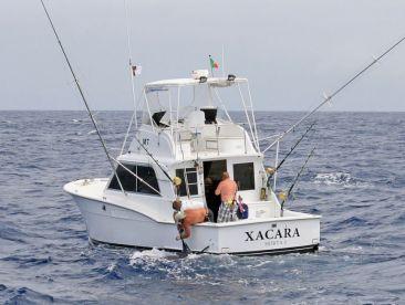 Xacara - Brasilia Fishing Charters, Horta