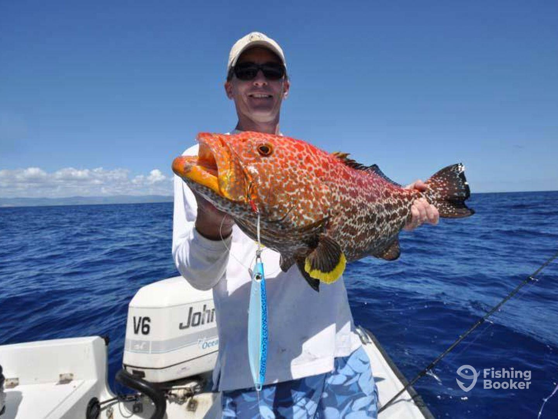 Freedivers pr blue water hunter san juan puerto rico for Puerto rico fishing
