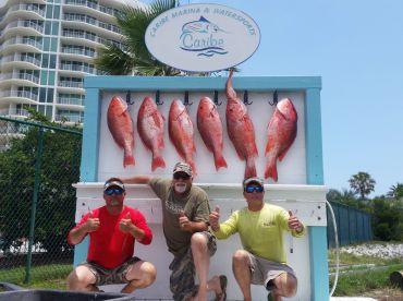Reel Fishin' Charters
