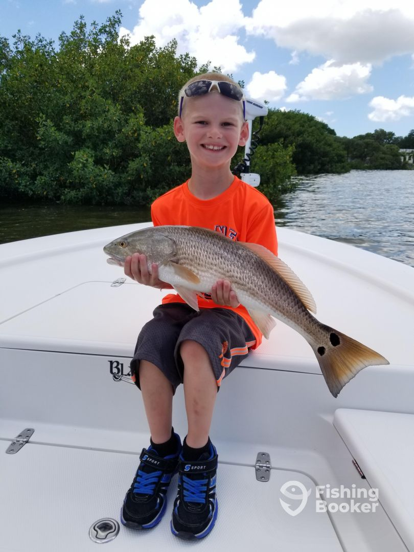 Gulf to bay fishing charters clearwater fl fishingbooker for Gulf angler fishing charters