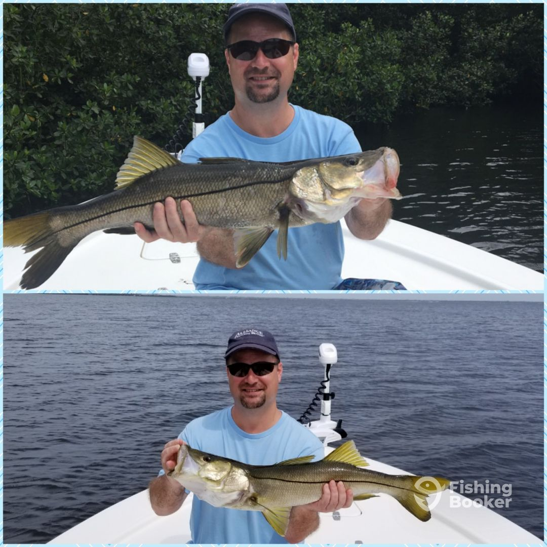 Gulf to bay fishing charters clearwater fl fishingbooker for Clearwater beach florida fishing charters