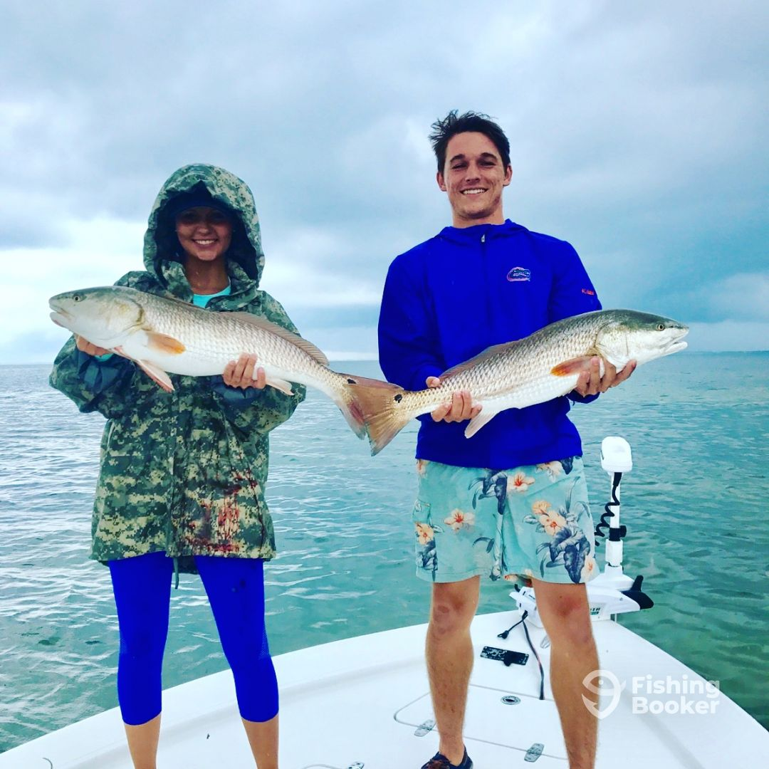 Gulf to bay fishing charters clearwater fl fishingbooker for Clearwater charter fishing