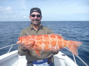 Bluewater (reef) fishing for Coral Trout from Cairns