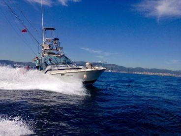 Gibraltar Tuna Fishing
