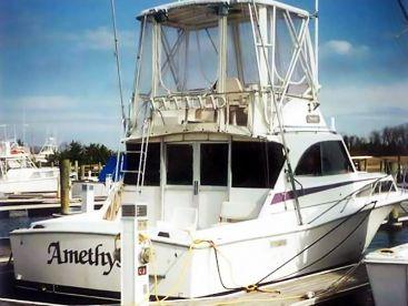 Amethyst Sportfishing