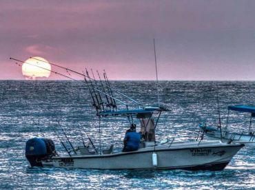 Viking Fishing Charters - PV