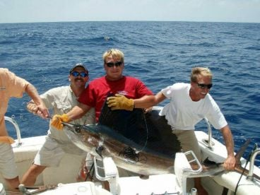 Todds Sportfishing