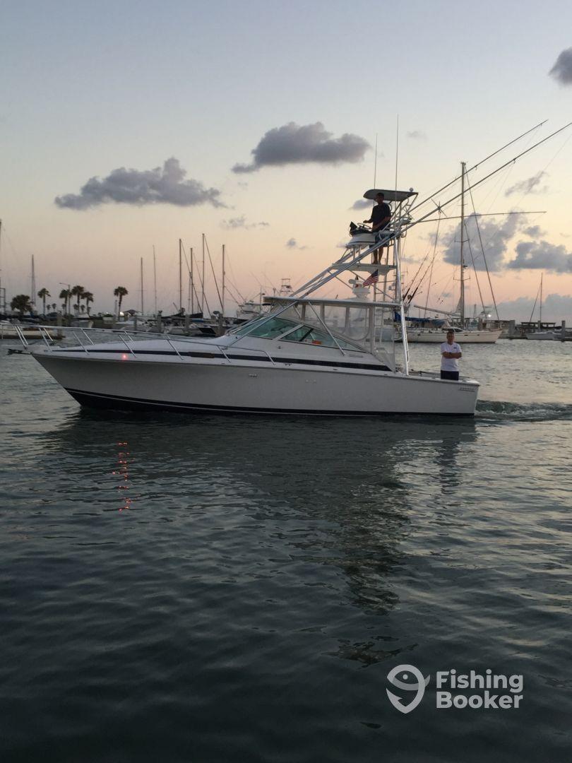 Island time offshore charters port aransas tx for Port aransas fishing charters