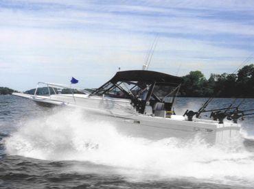 Reel Easy Sportfishing Charters, Rochester