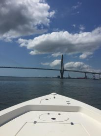 Harbor, historic and nature tours
