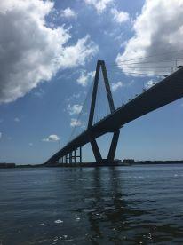 Harbor and Charleston panisula cruises