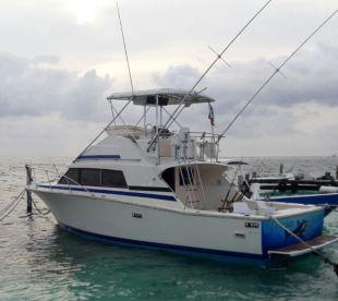 Dream Catcher - 33' Bertram, Cancún