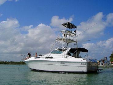 Adventure Charters Belize, Hopkins