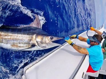 Reel Addiction Charter Fishing