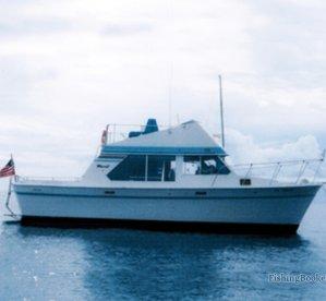 Lucky Lady Fishing Charters Guam