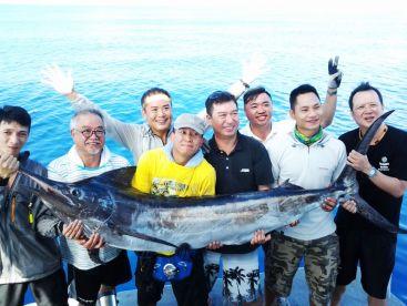 Blue K Safari - Dolphin Liveabaord