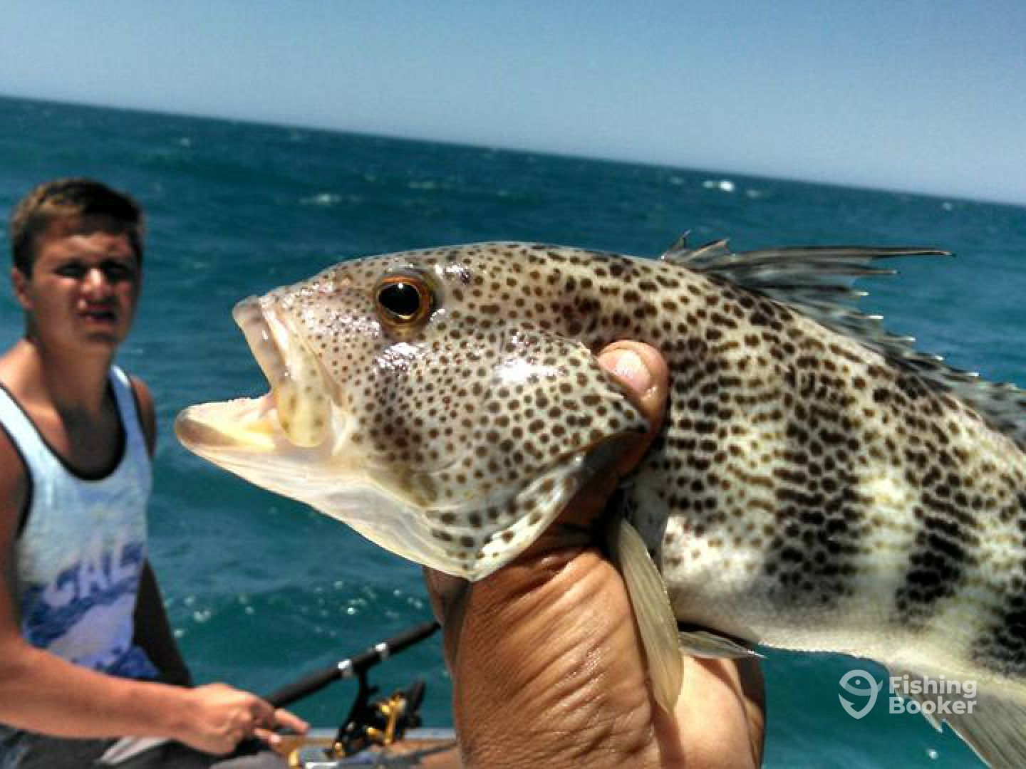 Rock point fishing club 38 39 puerto pe asco mexico for Rocky point fishing charters