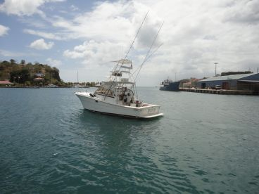 Grenada Charter Fishing, St Georges