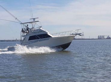 Fishing Frenzy Charters - Pescadox