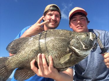 Second Tripletail of the day!
