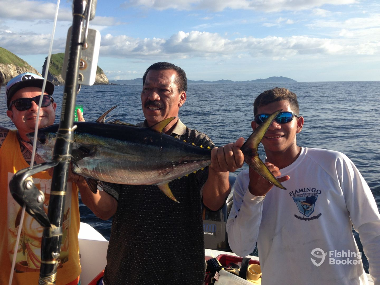20pound yellowfin tuna
