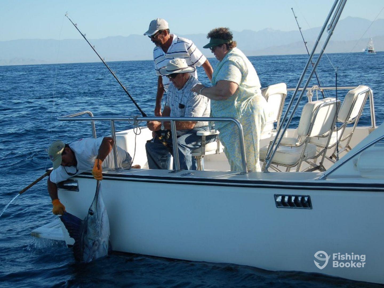 Ursula fishing iv 34 crystaliner cabo san lucas for Cabo san lucas fishing charters prices