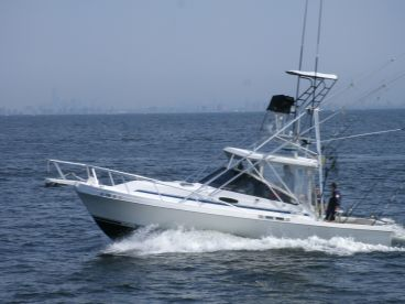 Double Down II Sportfishing Charter