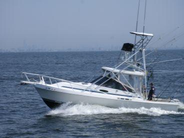 Double Down II Sportfishing Charter