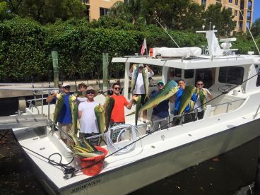 Southern Comfort IV Charters