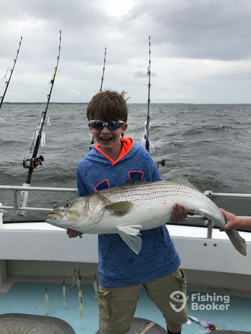 Migrator charters deale md fishingbooker for Deale md fishing charters