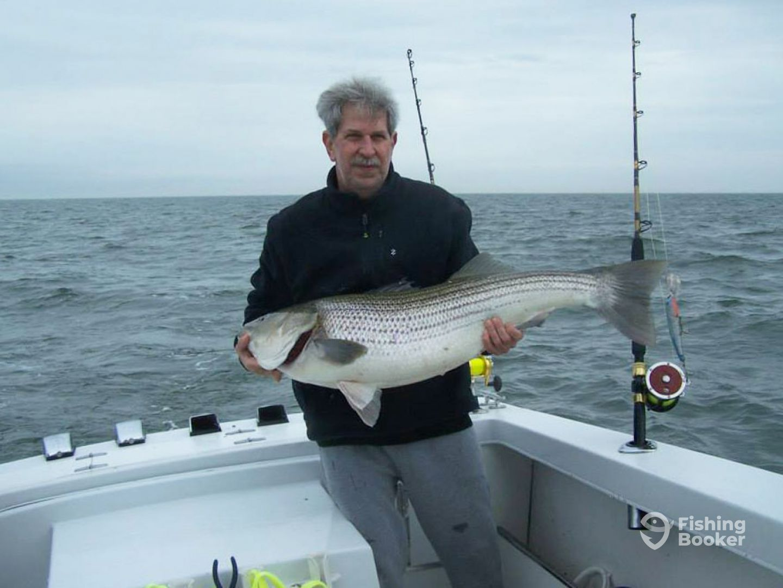 Fishhook sport fishing norfolk va fishingbooker for Fishing in norfolk va