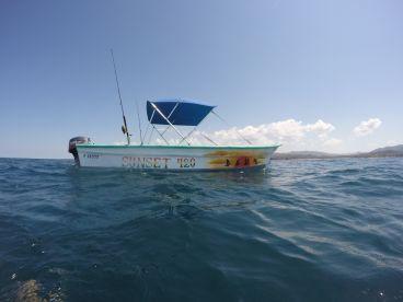 Nosara Fish and Surf