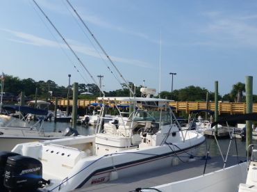 Y-Knot Fishing Charters